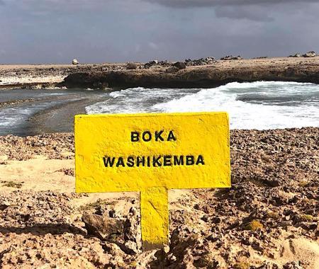 BOKA WASHIKEMBA