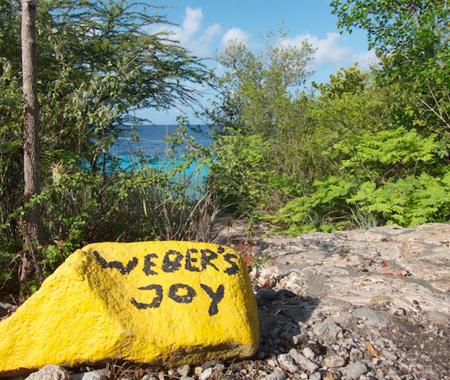 WEBER'S JOY